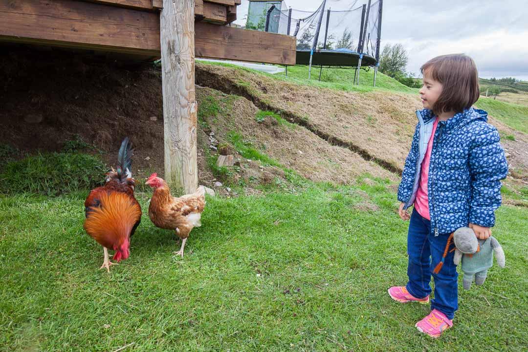 Lucie et les poules